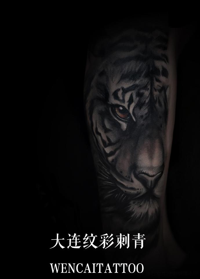 大连的刘先生小腿上的霸气虎头纹身