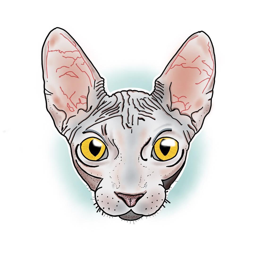 做基金经理的严先生斯芬克斯猫纹身手稿图片